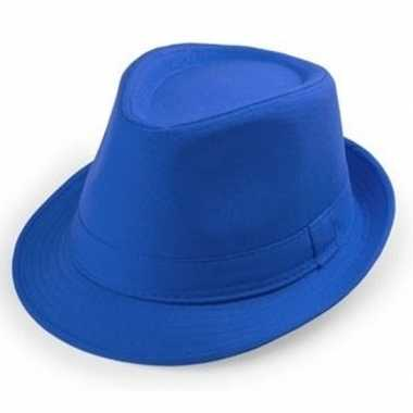 Goedkope blauwe verkleed hoedjes voor volwassenen