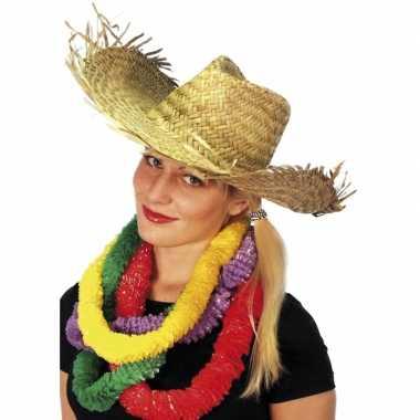 Hawaii stro hoed