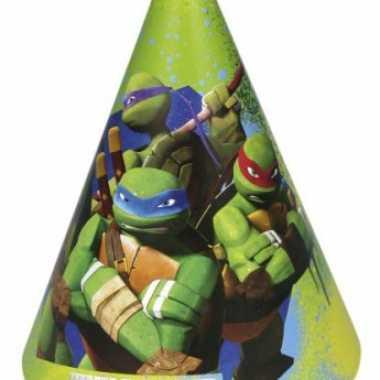 Kartonnen ninja turtles hoedjes