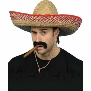 Mexicaanse sombrero hoed verkleedaccessoire voor volwassenen
