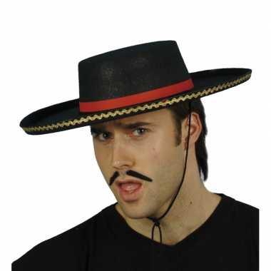 Spaanse feesthoed hoed
