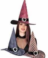 Gestipte heksenhoed met gesp hoed