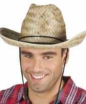 Rieten cowboyhoed dallas voor volwassenen hoed